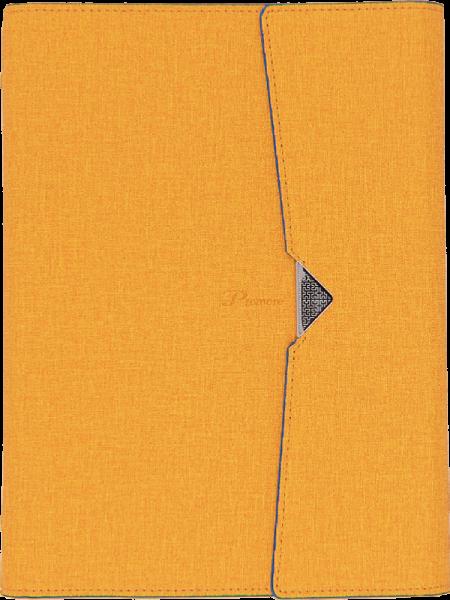 3031-yellow